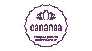 cananea_logo_180x100px.png